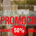 Promocje - 31 płyt taniej nawet o 50%