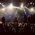 malchus - koncert - tripudium
