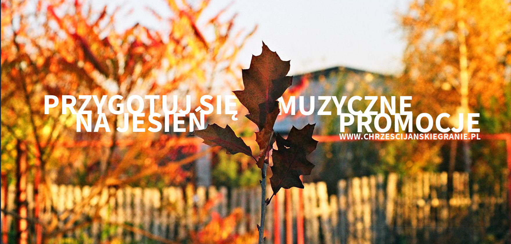 jesiennie promocje